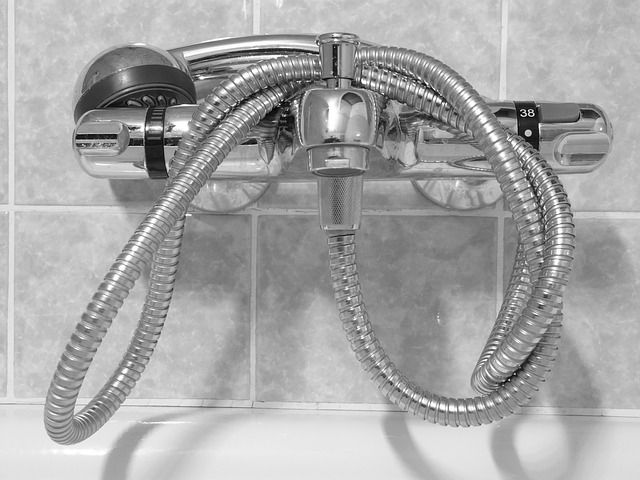 shower-head-49645_640
